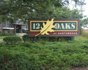 3222 Sanders Road Unit 2A, Northbrook image
