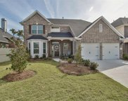 17665 Northern Harrier Court, Conroe image