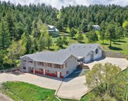 91 Black Birch Road, Golden image