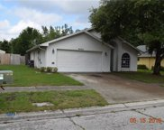 2903 Wilder Creek Circle, Plant City image