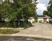 4703 Onyx Place, Tampa image