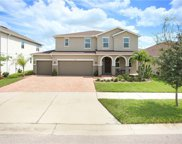 11315 Brighton Knoll Loop, Riverview image