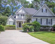 4413 Downing Place Way Way, Mount Pleasant image