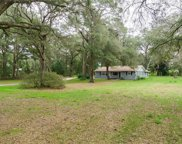 18134 Mount Olive Drive, Dade City image