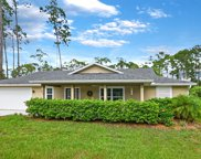 875 Twisted Pine Drive, New Smyrna Beach image