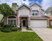 14518 Nettle Creek Road, Tampa image