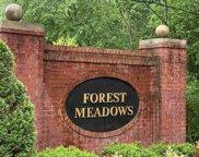 2099 Forest Meadows Cir, Birmingham image