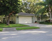 1357 Wexford Drive N, Palm Harbor image