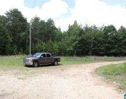 County Road 793 Unit 20 Acres, Centre image