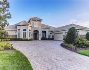 11828 Shire Wycliffe Court, Tampa image