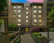 3810 Mission Hills Road Unit 303, Northbrook image
