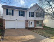834 Salem  Way, Ellisville image