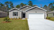 256 Forestbrook Cove Circle, Myrtle Beach image
