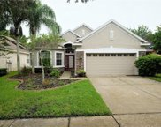 11636 Greensleeve Avenue, Tampa image