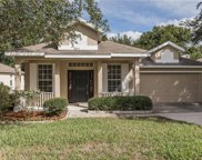 1766 Madison Ivy Cir., Apopka image
