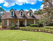 11412 Nellie Oaks Bend, Clermont image