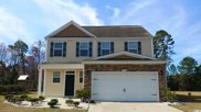 1308 Wellfound Ct., Conway image