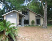 31209 Lochmore Circle, Sorrento image