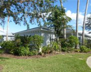 204 Rock Springs Drive, Poinciana image