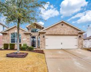1609 Black Willow Trail, Anna image