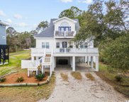 171 Brown Pelican Loop, Pawleys Island image