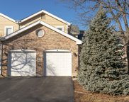 11406 Lakebrook Court, Orland Park image