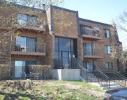 722 Tipperary Court Unit 1B, Schaumburg image