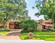 4201 Wayside Willow Court, Tampa image