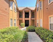 421 Summit Ridge Place Unit 213, Longwood image