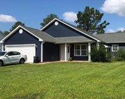 207 Quarterhorse Lane, Jacksonville image
