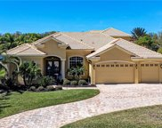 328 Blackbird Court, Bradenton image