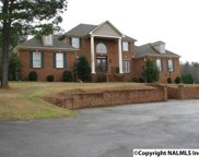 461 Cabbage Patch Road, Laceys Spring image