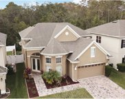1212 Balsam Willow Trail, Orlando image