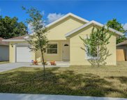 8406 N Mulberry Street, Tampa image