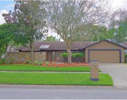 3309 Foxridge Circle, Tampa image