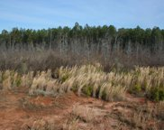 Lot 5 Hwy 79, Lincolnton image