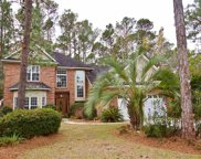 163 Red Tail Hawk Loop, Pawleys Island image
