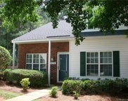 10150  Forest Landing Drive, Charlotte image