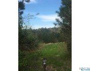 00 Bear Creek Road, Haleyville image