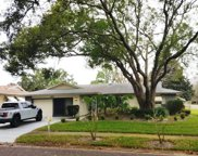 2802 Cameron Court, Palm Harbor image