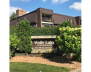 4860 Park Commons Drive Unit #209, Saint Louis Park image