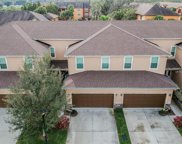8613 Andalucia Field Drive, Tampa image