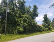 47 Luther Dr, Palm Coast image