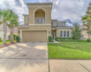 17515 Bright Wheat Drive, Lithia image