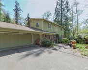 15432 256th Ave SE, Issaquah image
