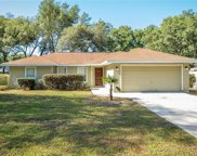 11146 Sw 107th Place, Dunnellon image