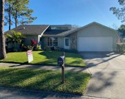 440 Oxford Road, Palm Harbor image