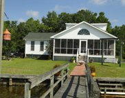 1429 Blackberry Bush Road, Summerton image