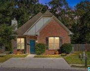 1069 Savannah Lane, Calera image