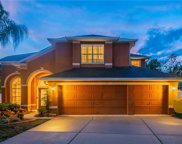 11038 Ragsdale Court, New Port Richey image